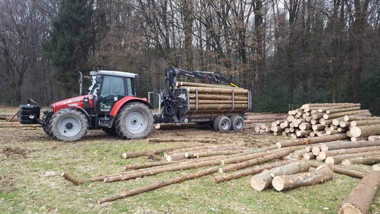 Holzrücken